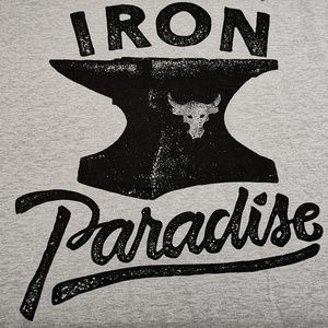 UA x Project Rock Iron Paradise Tee Under Armour